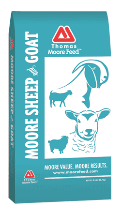 TMF-GOAT-&-SHEEP-2-COLOR-BAG