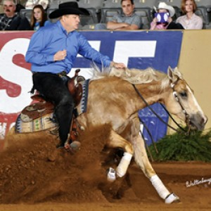 Tom McCutcheon Reining Horses proud to use Thomas Moore Feeds